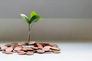 Monetizing Money